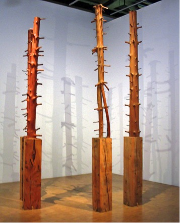 Giuseppe Penone, Alberi, 1969, legno